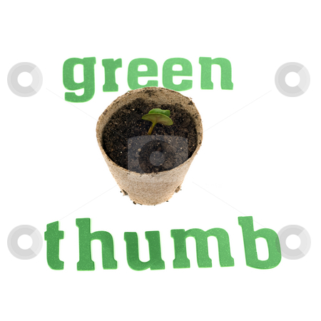 Green Thumb stock photo, Concept image of someone with a green thumb, by shooting a plant that is starting to grow by Richard Nelson