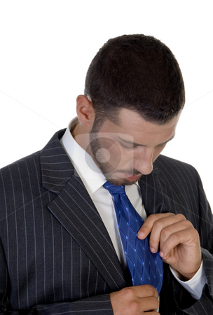 Man looking his tie stock photo, Man looking his tie on an isolated white  background by Imagery Majestic