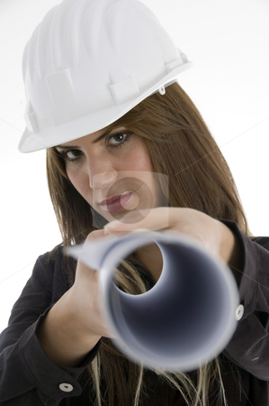 Female architect with chart stock photo, Female architect with chart with white background by Imagery Majestic