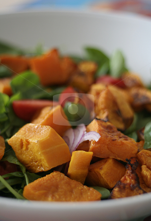 Roast pumpkin salad stock photo, Roast pumpkin salad, shallow focus by Gary Cookson