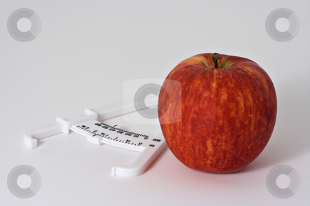 Apple and Caliper 2 stock photo, Apple and fat calipers on white background by Stephen Bonk