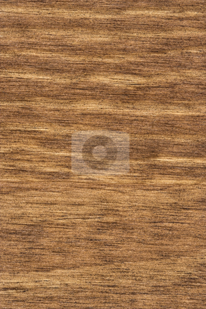 Wood Grain 3 stock photo, A detailed photo of wood grain. The grain and texture of the wood is very prominent. by Stephen Bonk