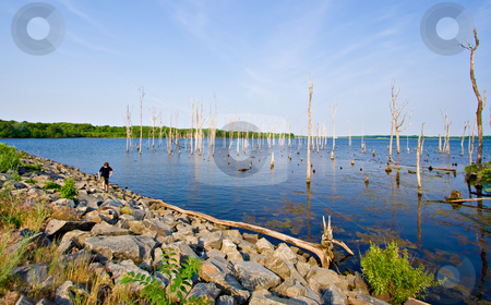 Reservoir stock photo, A reservoir with a boy hiking along the shoreline. The setting is beautiful Manasquan Reservoir in New Jersey. by Stephen Bonk