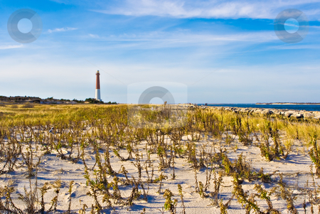 Lighthouse stock photo, Barengat Lighthouse at Long Beach Island, New Jersey. This lighthouse is nicknamed Old Barney. by Stephen Bonk