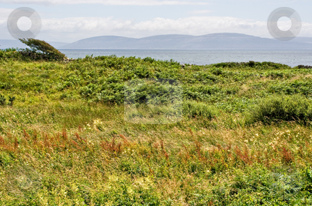 Galway Bay and Field stock photo, A field in the foreground with Galway Bay and the Burren of Ireland in the background by Stephen Bonk