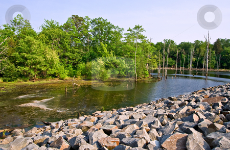 Water in the Wilderness stock photo, A reservoir in a pretty setting with rocks and trees by Stephen Bonk
