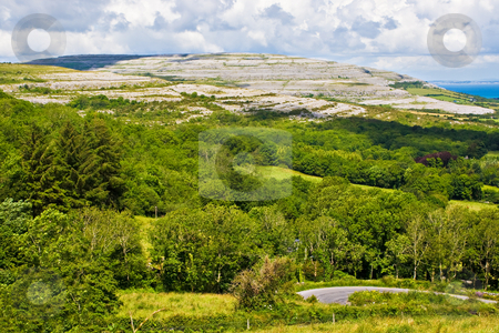 Ireland Landscape stock photo, Landscape of County Clare, Ireland. Trees and a winding road are in the foreground. A hill of The Burren and the sky are in the background. by Stephen Bonk
