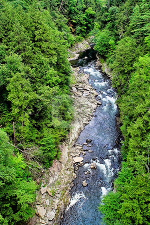 Gorge stock photo, A deep gorge with a river at the bottom and surrounded by trees by Stephen Bonk