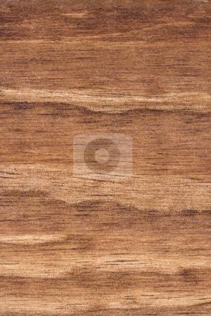 Wood Grain 2 stock photo, A detailed photo of wood grain. The grain and texture of the wood is very prominent. by Stephen Bonk
