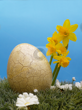Easter egg stock photo, Easter egg with drarf daffodils on artificial grass and blossoms, blue background by Torsten Lorenz