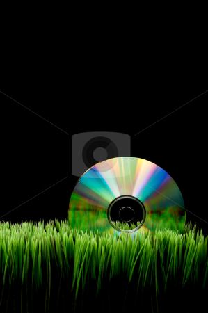Compact computer data disk on green grass with a black backgroun stock photo, Compact computer data disk on green grass with a black background and space for copy by Vince Clements
