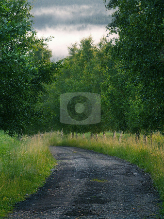 Road stock photo,  by Sarka