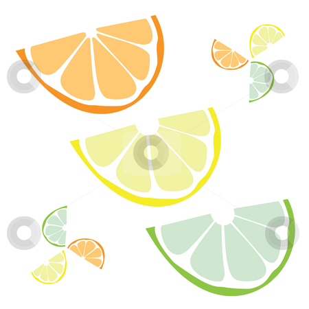 Citrus Slices  stock photo, Citrus wedges isolated over a white background.  Orange lemon lime or even grapefruit. by Todd Arena