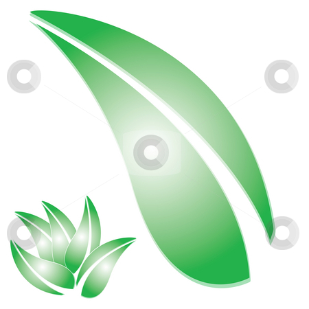 Green Leaf stock photo, A drawing of some greenery.  Arrange the leaves any way you want to accent your designs. by Todd Arena