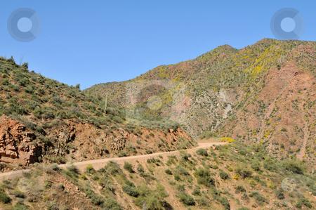 Apache Trail stock photo, Dirt road curving through desert mountains, Apache Trail, northeast of Phoenix, Arizona by Harris Shiffman