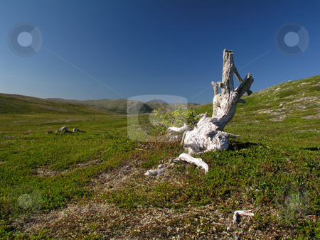 Mountains and Sky stock photo, Mountains and Sky by Ingvar Bjork