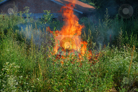 Fire in green grass stock photo, Orange flame in green grass by brick house with tiled roof by Julija Sapic