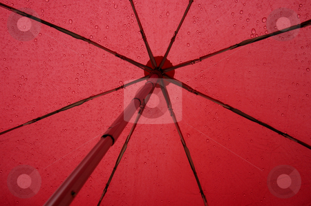 Under my umbrella stock photo, Close up of the underside of a red umbrella in the rain. Abstract graphic image, suitable for background. by Alistair Scott