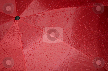 Wet umbrella stock photo, Close up of a wet, red umbrella. Abstract graphic image, suitable for background. by Alistair Scott
