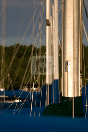 Masts in a row stock photo, A group of Sailboat masts and rigging. by Kevin Woodrow