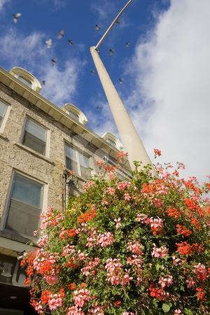 Hanging Flower Basket against old building stock photo, Looking up at an old building, with a flower basket framing the lower portion of the photo, and a bunch of blurred pigeons dotting the background. by Kevin Woodrow