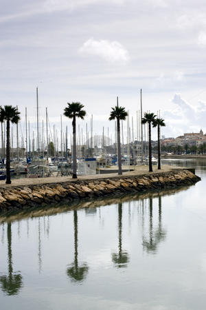 Along the Canal in Lagos Portugal stock photo, Along the canal waters, with palm trees and their reflection dotting the scene, and a marina in the background.  Vertical Composition. Taken in Lagos, Portugal by Kevin Woodrow