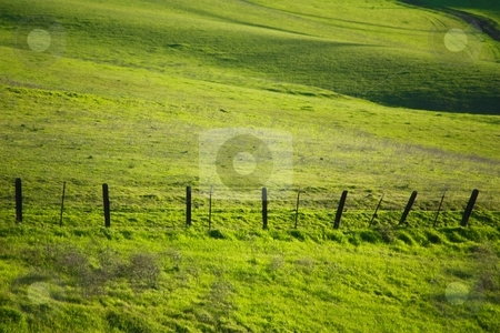 Hillside and barbed fence stock photo, Hillside and barbed fence by Gregory Dean