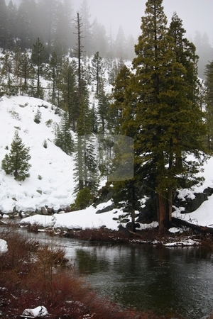 River running through the forest in the winter. stock photo, River running in the winter by Gregory Dean