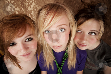 Three Young Girls stock photo, Portrait of three pretty young girls on a gold background by Scott Griessel
