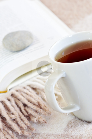 Relaxing reading with tea stock photo, Relaxing with a book and cup of tea by Elena Elisseeva