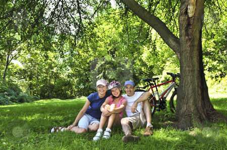Family resting in a park stock photo, Family resting in summer park with bicycles by Elena Elisseeva