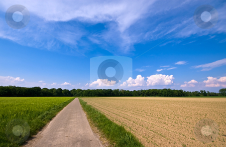 Rural scenery with road stock photo, Country road through a rural farmlandscape with nice cloudscape by Karin Claus