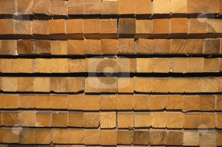 Wood ends stock photo, Close-up of the ends of regularly-sized wooden planks, piled up at a sawmill. by Alistair Scott