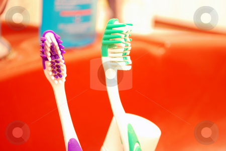 Tooth Brushes stock photo, Close Up Of two Tooth Brushes in bathroom by Tudor Antonel adrian