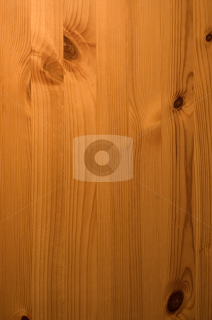 Antique Pine Wooden Panel stock photo, Antique pine wooden door panel by Peter Cox