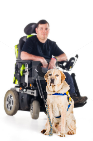 Guiide dog stock photo, A labrador guide dog with his proud owner by Tommy Maenhout