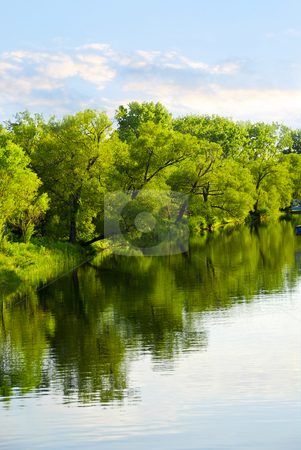 Trees reflecting in river stock photo, Reflection of green trees in calm water with blue sky by Elena Elisseeva