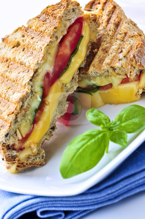 Grilled cheese sandwich stock photo, Grilled cheese and tomato sandwich on a plate by Elena Elisseeva