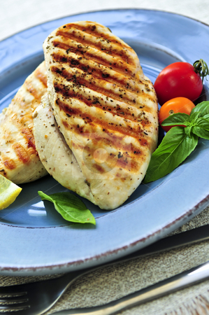 Grilled chicken breasts stock photo, Grilled chicken breasts on a plate with fresh vegetables by Elena Elisseeva