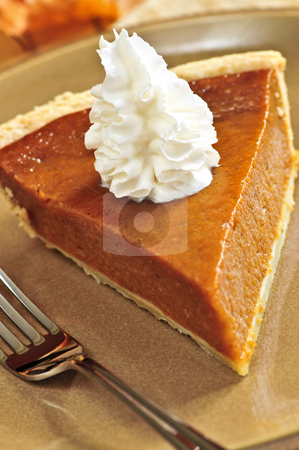 Pumpkin pie stock photo, Slice of pumpkin pie with fresh whipped cream by Elena Elisseeva