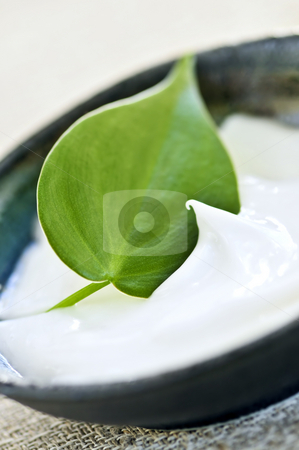 Lavender cream stock photo, Natural face cream or skincare with green leaf by Elena Elisseeva