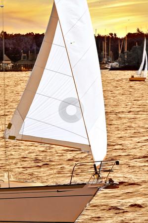 Sailboat at sunset stock photo, Sailboat with white sail sailing at sunset by Elena Elisseeva