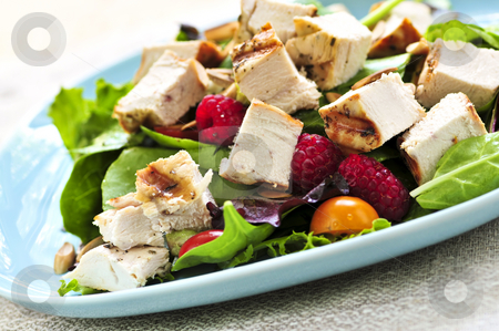Green salad with grilled chicken stock photo, Healthy green salad with grilled chicken breast by Elena Elisseeva