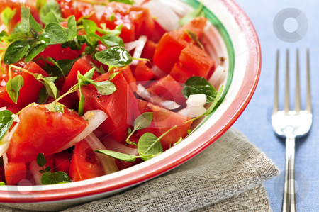 Tomato salad stock photo, Summer tomato salad with onions and herbs by Elena Elisseeva