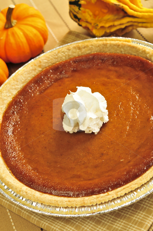 Pumpkin pie stock photo, Whole pumpkin pie with fresh whipped cream by Elena Elisseeva