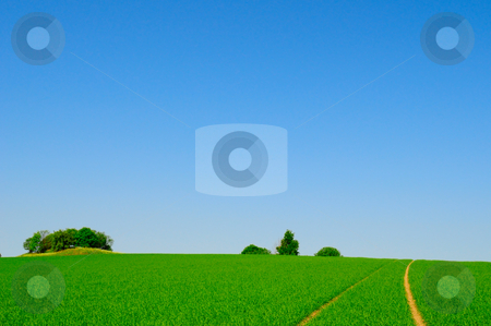 Perfect farmland stock photo, Perfect farmland and blue sky by Magnus Johansson