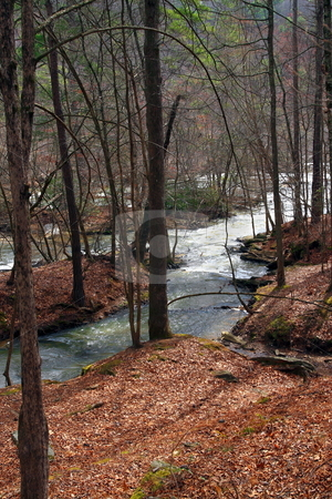 River Bank stock photo, River bank in late winter Lithia Springs Georgia by Jack Schiffer
