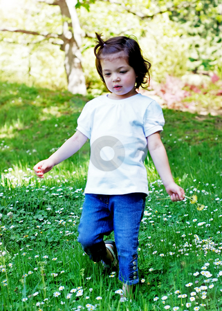 Little Girl stock photo, Cute little girl picking summer flowers on a sunny day in the park. Vertically framed shot. by Orange Line Media