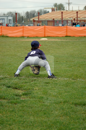 Young Boy Fielding stock photo, Young boy in the ready position ready to field during a baseball game by Orange Line Media