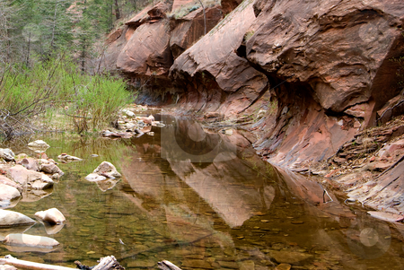 Creek in Sedona AZ stock photo, Creek on the West Fork Trail in Sedona, AZ by Randy Miramontez